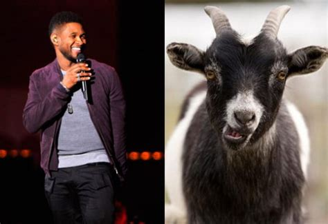 Usher Goat | video usher papers mash up with man goat starcasm net