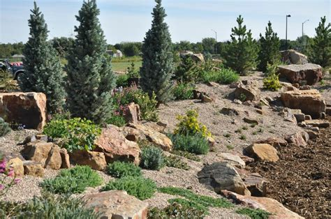 Rock Garden Fort Collins Birth Of A New Rock Garden At The Gardens At Creek Denver Botanic Gardens