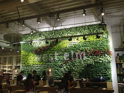 Interior Plant Wall Living Wall Projects Los Angeles