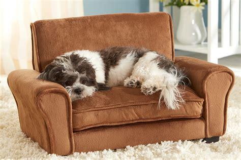 poltrona per cani il divanetto per animali domestici dottorgadget