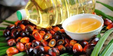 Minyak Kelapa Sawit Per Kg harga tbs sawit di riau semakin merosot ditetapkan rp1 928
