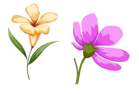 imagenes de flores individuales dibujos de flores flor flores de colores flores de