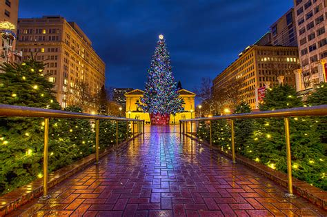 christmas tree lighting downtown portland or portland tree lighting ceremony is friday pioneer square pictures
