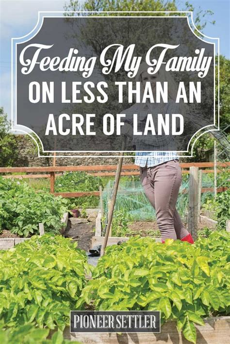 backyard farming on an acre best 25 types of farming ideas on pinterest garden soil
