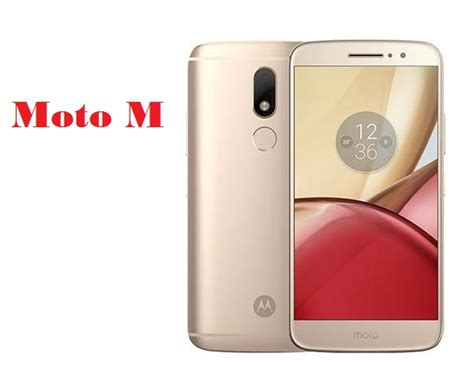 Moto M motorola moto m price in india reviews specifications gadgets finder