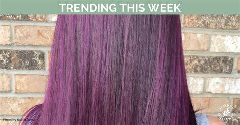 matrix lavender formula matrix lavender formula purple hair color formulas best