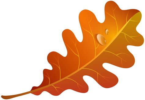 leaf clipart orange leaves fall leaves clipart clipground