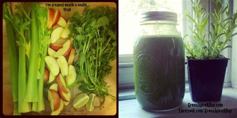 Detox Juice Ingredients Philippines by 179 Best Pulmonary Hypertension Ph Images On