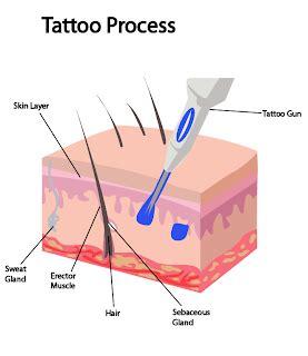 tattoo in process video blank canvas tattoo process