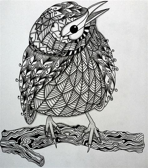 pattern drawing bird bird zentangle pro am crafts