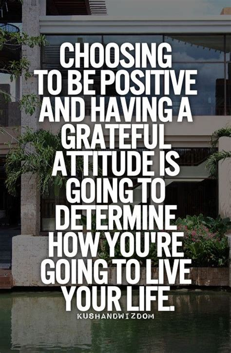 Growing Your Attitude 1 36 best images about positive attitude quotes on positivity positive attitude