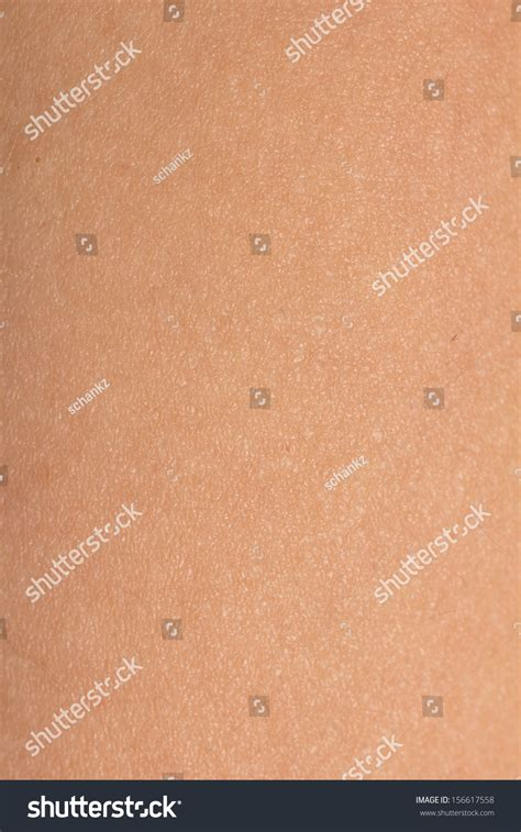 human skin macro stock image image of healthcare papillary 14341663 background of the human skin macro stock photo 156617558