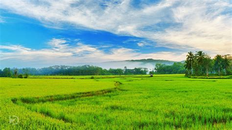 wallpaper for walls kerala complete list of 70 best things to do in kerala with
