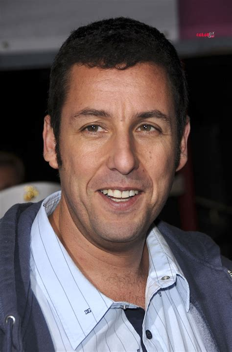 7 Facts On Adam Sandler 2 by Adam Sandler Picture Celebsee