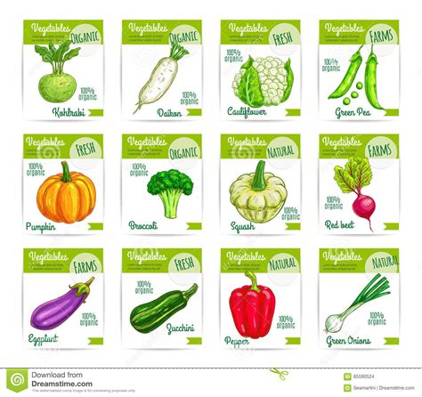 printable vegetable labels printable vegetable garden markers pictures to pin on
