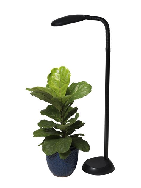 cfl grow light full spectrum floor plant l gardeners com