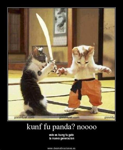 imagenes chistosas de kung fu panda imagen graciosos gig6j jpg kung fu panda wiki