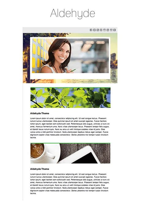 newsletter layout wordpress 38 best ideas about email newsletter templates on