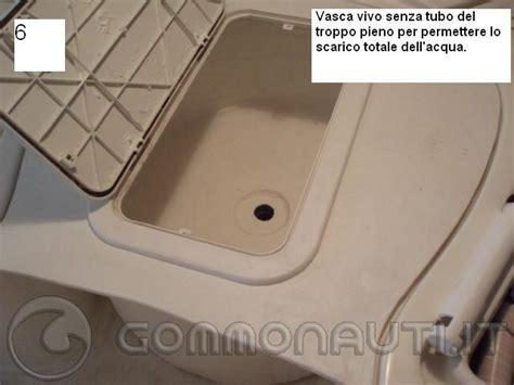 vasca vivo foto realizzazione vasca vivo