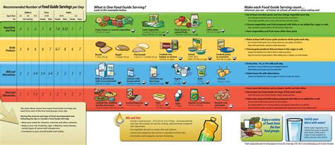 the food guide to canada s food guide food for health