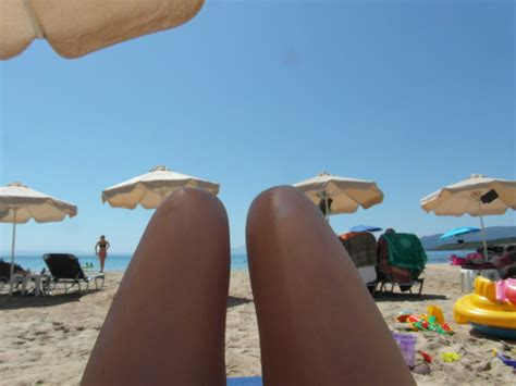 dogs or legs legs or dogs