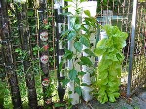 Vertical Garden Materials Bottle And Pot Tower Gardening Ibagu 233 Greenbelt Willem