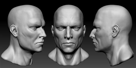 head sculpting tutorial in zbrush head zbrush by sanislov on deviantart
