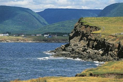 trump island cape breton embraces site promising donald trump free home