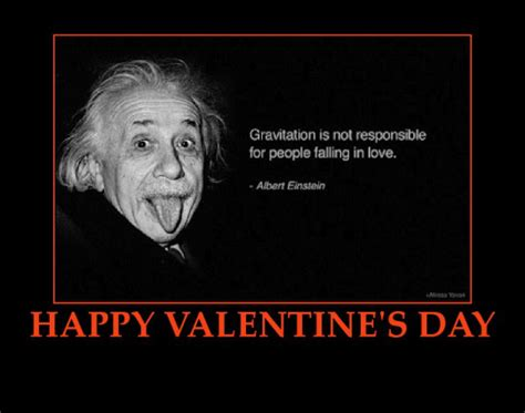 funny valentines day quotes today s jokes 14 february 2014 valentines day bear tales