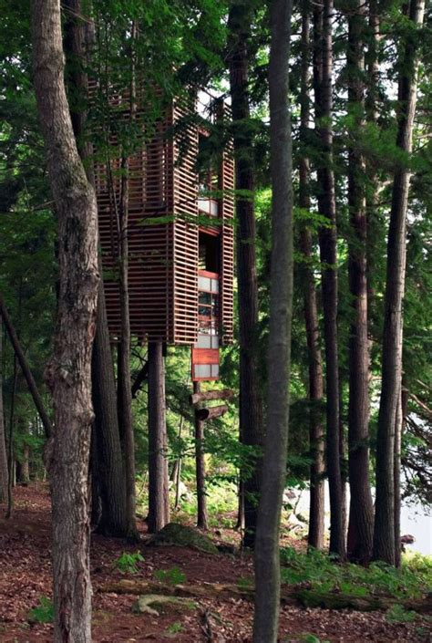 the most amazing treehouses 17 pics