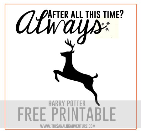 After All This Time Quotes. QuotesGram