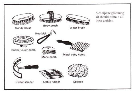 grooming equipment image gallery grooming equipment