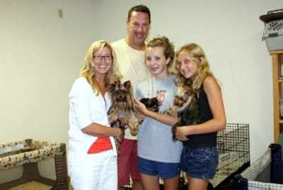 yorkie puppies for sale pittsburgh pa terrier puppies for sale pa photo