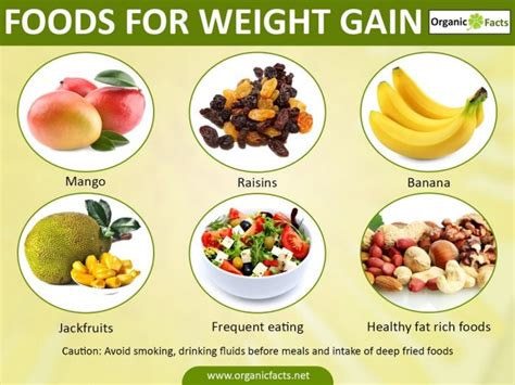 healthy fats for weight gain 20 best foods for healthy weight gain organic facts