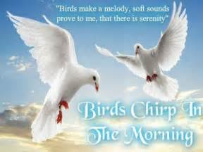 birds chirp in the morning
