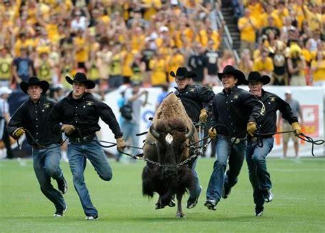 Cu Denver Vs Cu Boulder Mba by Cu Buffs Vs Csu Rams In Downward Spiral For Selling
