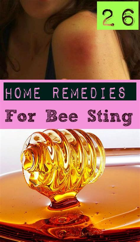 26 home remedies for bee sting bee stings