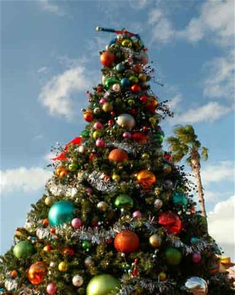 top christmas tree outside decoration outside tree decorations happy holidays