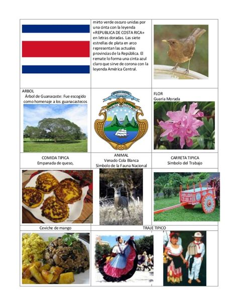 imagenes simbolos y emblemas nacionales de costa rica simbolos de centroamerica