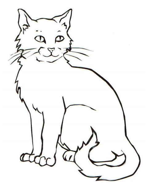 coloring pages of cats clever domestic animal cat 20 cat coloring pages free