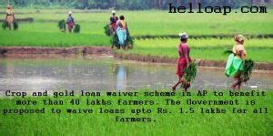 Ap Crop And Gold Loan Waiver Scheme 2014 Go And Guidelines | ap crop and gold loan waiver scheme 2014 go and guidelines