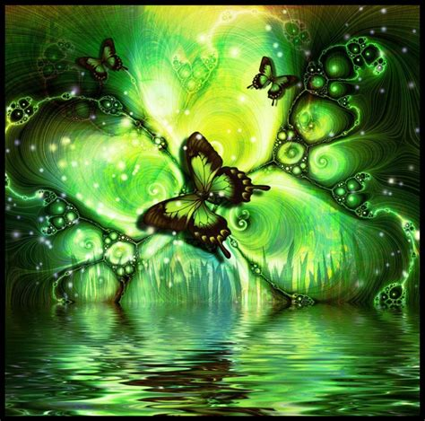 wallpaper green butterfly 1607 green butterfly hd picture wallpaper walops com