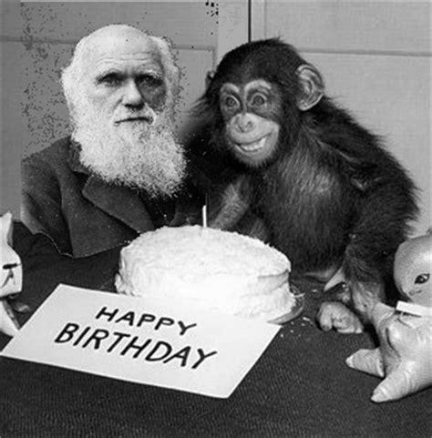 kanister sets fã r kã che di quella volta che mi sono evoluto in scimmia bonobo