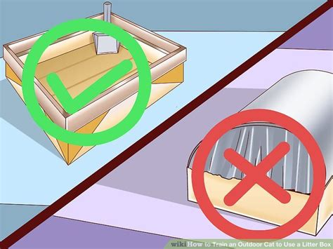how to a to use litter box how to an outdoor cat to use a litter box with pictures