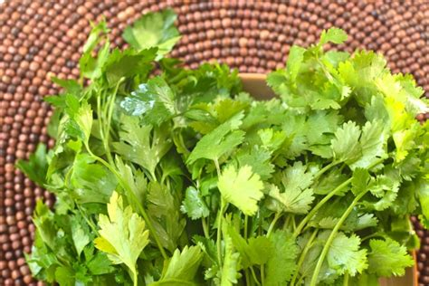 Cilantro Parsley Detox Smoothie by Tip Add Cilantro And Parsley To Smoothies