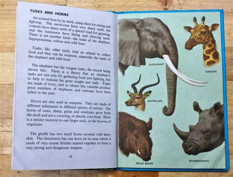 the magnificent book of animals books ladybird tuesday animals and how they live mrs fox s