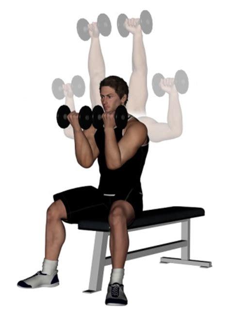 arnie bench press arnold dumbbell press bodybuilding wizard