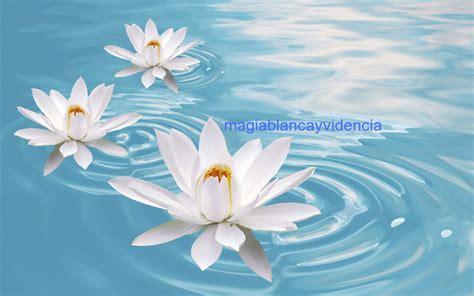 imagenes espirituales para bbm limpiezas espirituales gratis para atraer buena suerte y