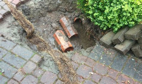 Plumbing Courses Surrey by Surrey Plumbers Drain Cleaning 778 928 7586