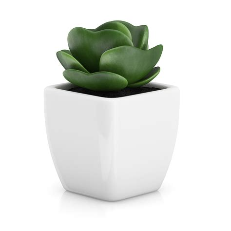 little plants small plant in white pot 2 by cgaxis 3docean